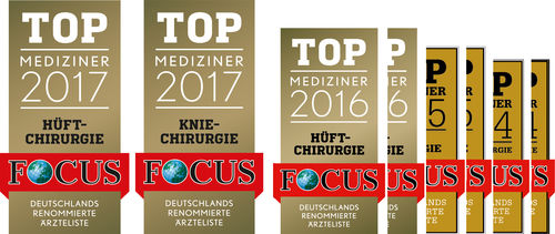 Focussiegel PROF  2017  FINAL